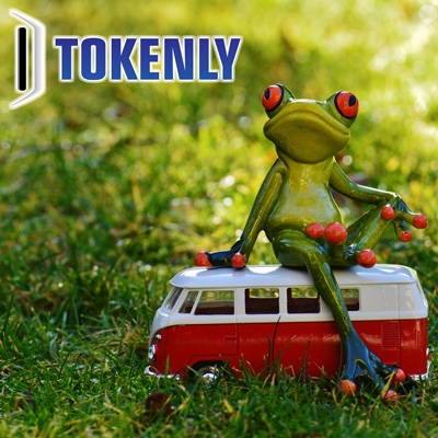 Tokens and the Family Car